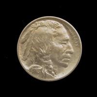 1913 Ty'1 BUFFALO NICKEL 5c (Nickel) AU55